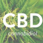 cbd for sale